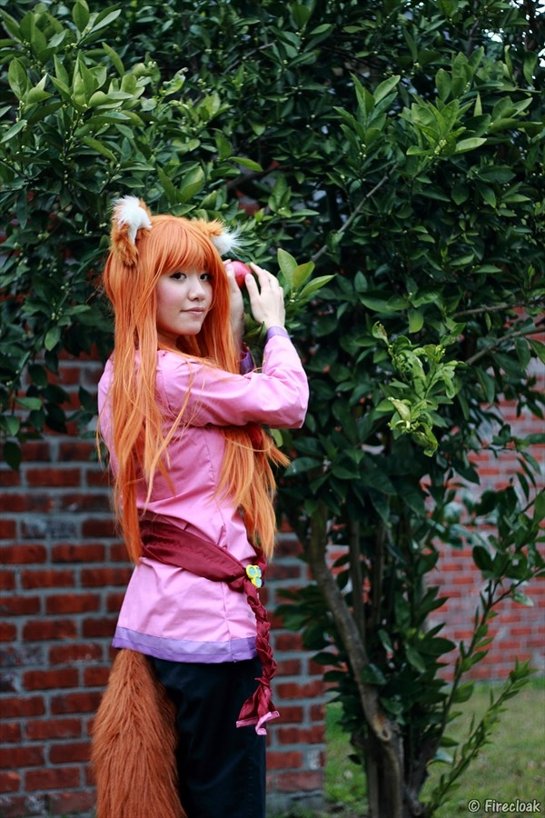 Spice and Wolf Holo Photos Cosplay