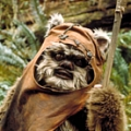 Ewok (Star Wars Rebels)